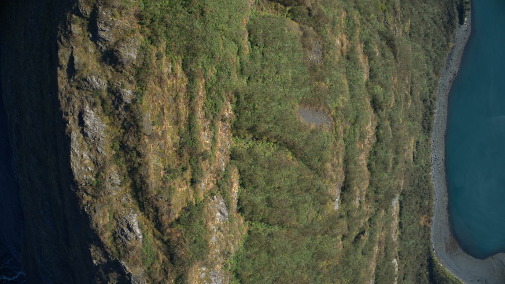 How do I disable max altitude | DJI FORUM